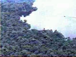 1992 Lake Tele